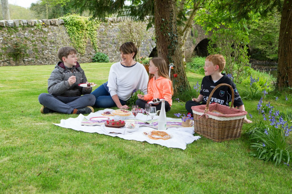 elizabethann-desserts-tarts-fox-picnic-kids-25